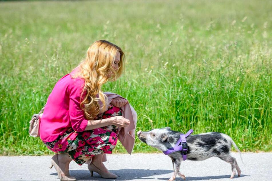 Rosalie (Natalie Alison, 43) und Schwein Chantal scheinen sich gut zu verstehen.