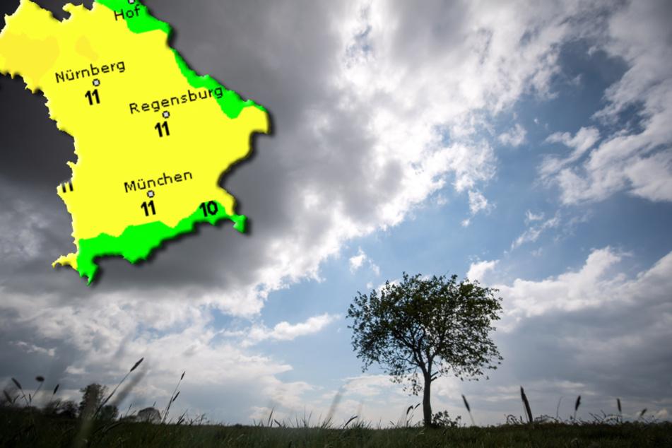 Wetter in Bayern: Erst viel Sonne, dann Regenwolken