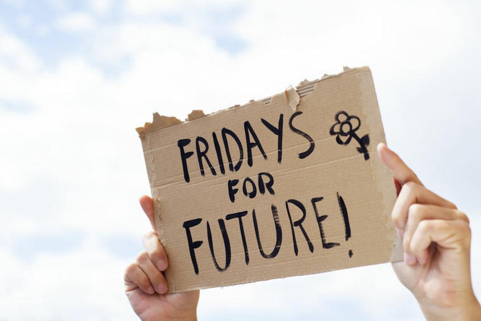 """Eine Person hält ein Schild hoch, auf dem """"FRIDAYS FOR FUTURE!"""" geschrieben steht."""