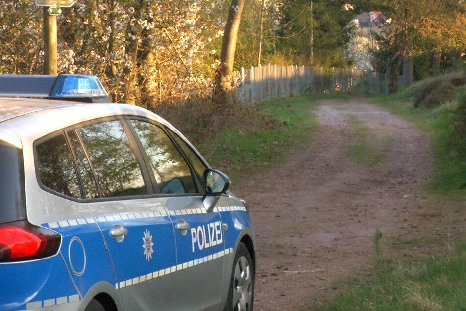 Mann vor 29 Jahren getötet? Polizei durchkämmt Waldstück