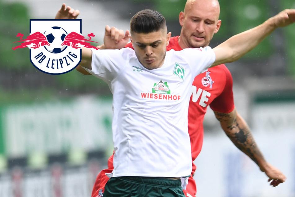Transfer vom Tisch? Bremen lehnt RB Leipzigs Angebot für Rashica ab