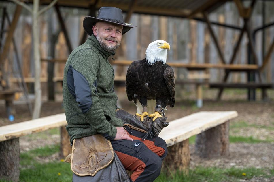 Hans-Peter Herrmann (38) lädt ab Dienstag wieder zur Flugshow, bei der auch der Weißkopfseeadler mit dabei ist.