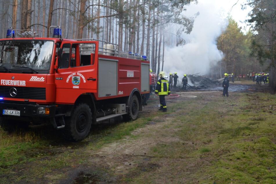 Waldbrand an der Grenze zu Sachsen: 60 Kräfte im Einsatz, Polizei ermittelt