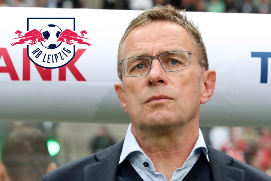 """RB Leipzig vor Bayern und BVB? Rangnick: """"Davon kann man nicht ausgehen!"""""""