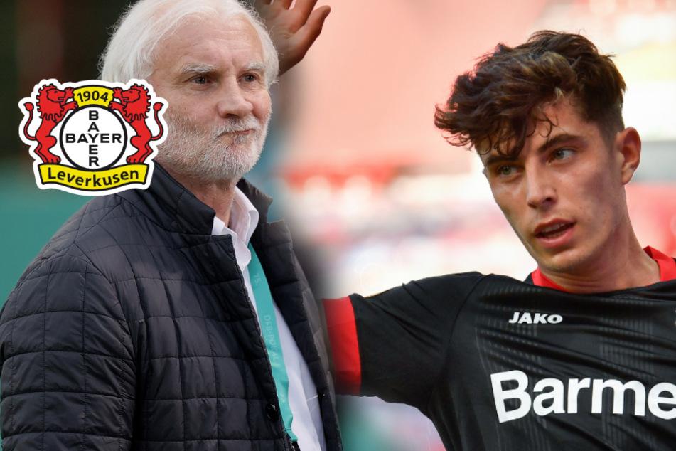 Rudi Völler adelt Kai Havertz: Besser als Toni Kroos und Michael Ballack!