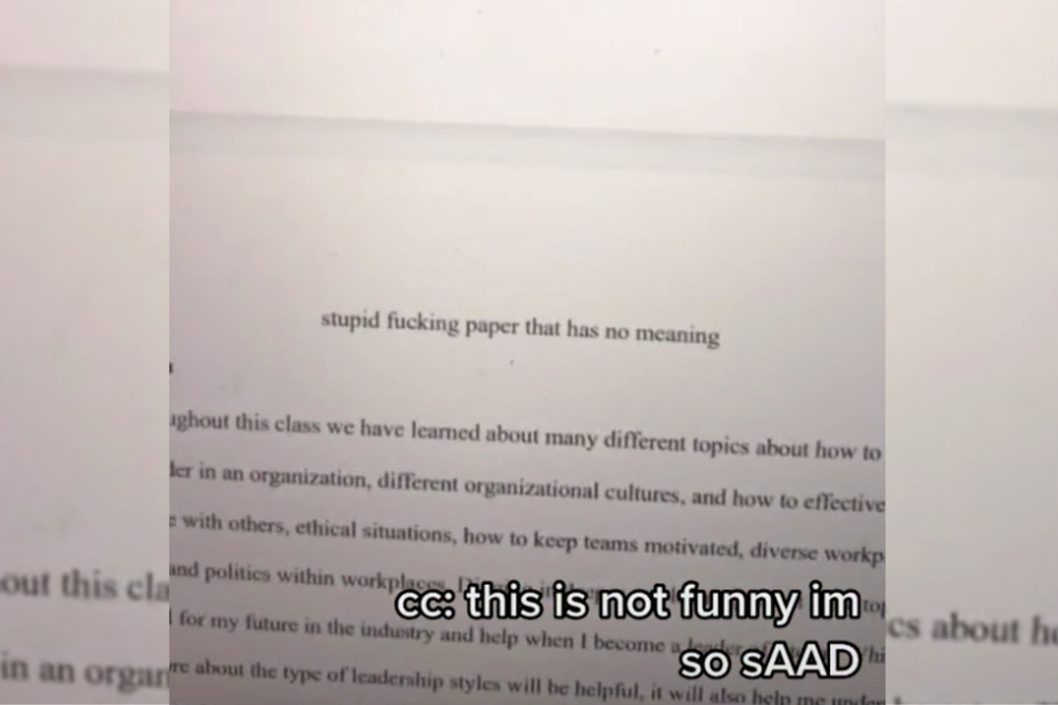 Funny or rude? A rather unusual title for a mid-term paper.