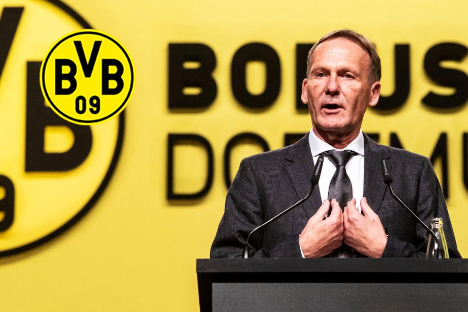 """BVB-Boss Watzke: """"Wenn wir nicht weiterspielen, säuft die ganze Bundesliga ab""""!"""