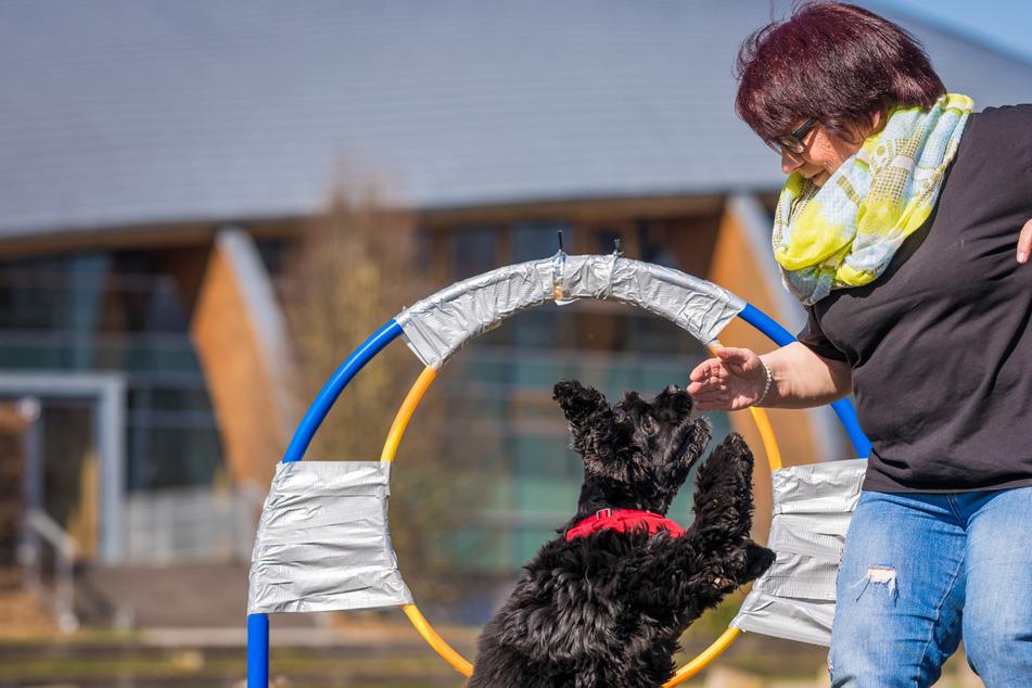 Hundetrainerin und Vierbeiner stellen Weltrekord im Reifensprung auf