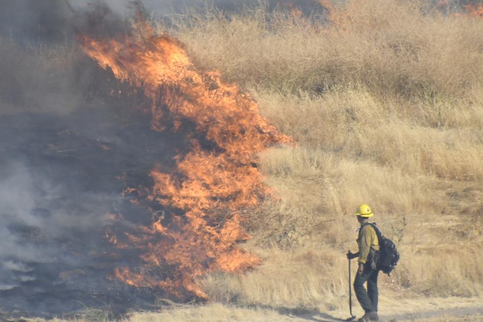 Agua Dulce: Ein Feuerwehrmann kämpft gegen ein sich schnell ausbreitendes Feuer.