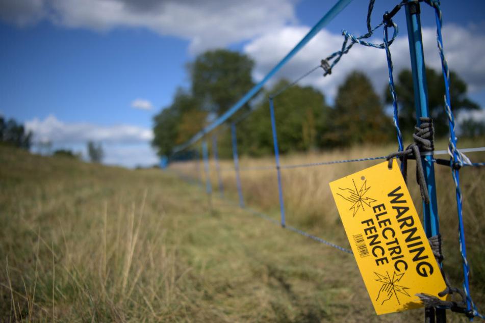 """Ein Schild """"Warning Electric Fence"""" hängt an der Grenze zu Polen an einem blauen Elektrozaun."""
