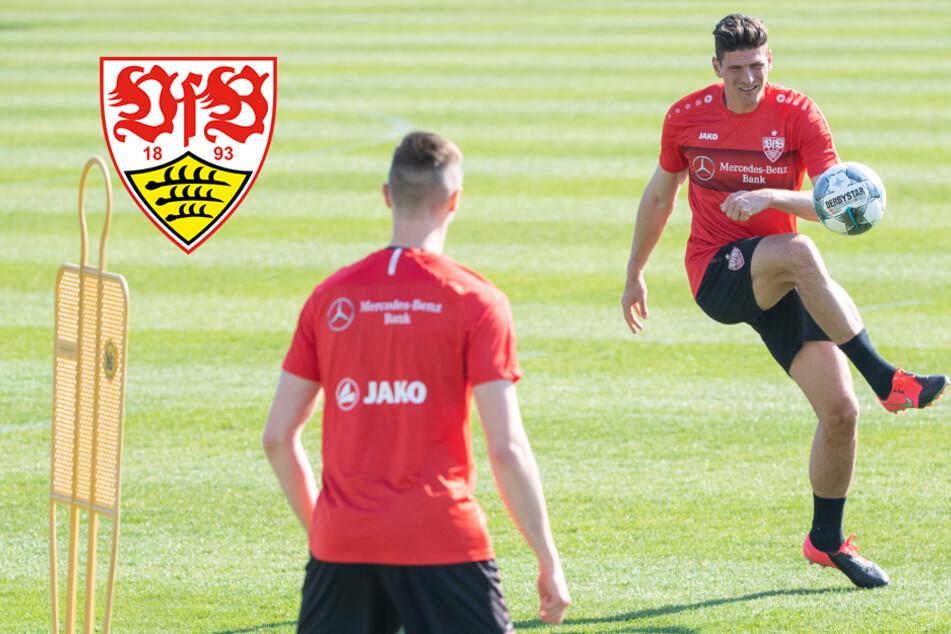 """VfB Stuttgart startet mit Training: """"Weil es unser Beruf ist!"""""""