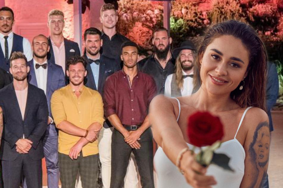"""Diese 20 Männer kämpfen um """"Bachelorette"""" Melissa Damilia"""