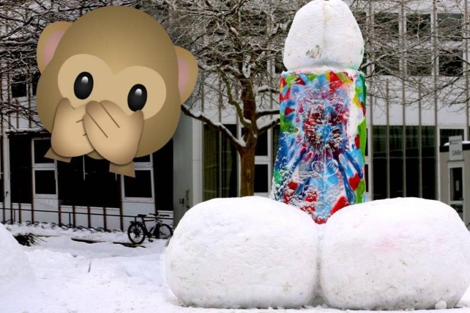 Schnee-Spaß: Studenten bauen gigantischen ...