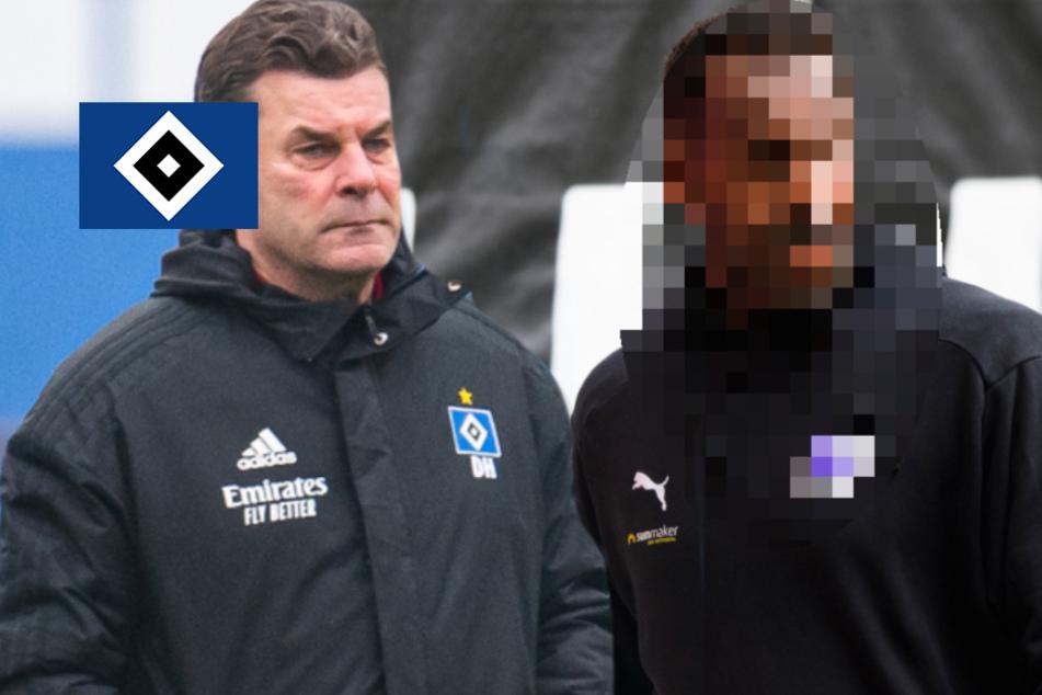 Nach Ende von Hecking-Ära: Wird ER der neue Trainer beim HSV?