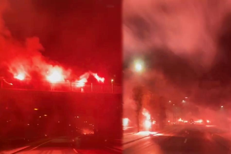 Die Dynamo-Fans hielten auf dem Video auch die Corona-Abstände vorbildlich ein.