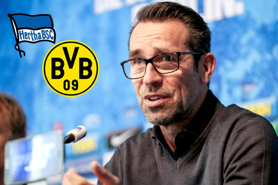 """Hertha-Manager Preetz freut sich auf BVB: """"Genau der richtige Gegner"""""""