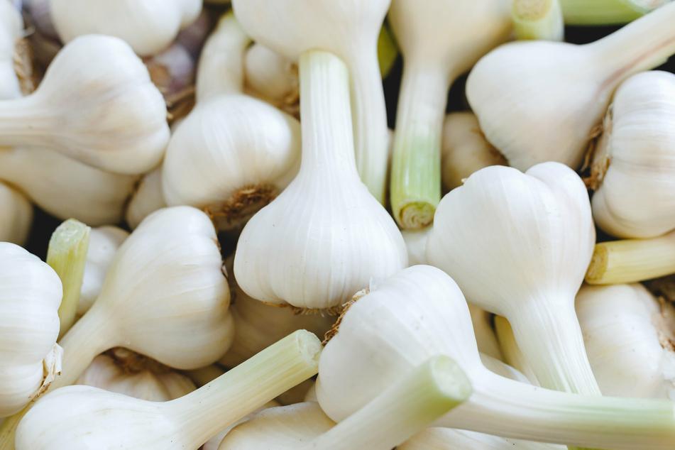 Super gesund! Knoblauch liefert Kohlenhydrate, Eiweiß und Ballaststoffe, aber auch Mineralstoffe, B-Vitamine sowie Vitamin C. (Symbolbild)