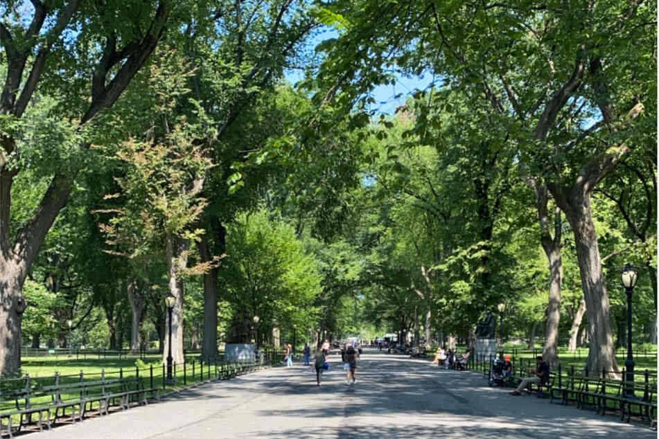Central Park will host a mega concert to culminate a Homecoming Week for the city on August 21.