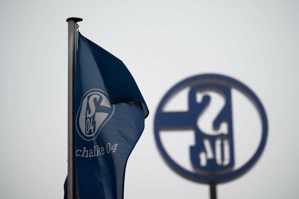 Dem FC Schalke 04 droht sehr wahrscheinlich in diesem Jahr der Abstieg in die 2. Fußball-Bundesliga.