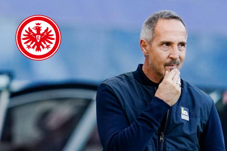 """""""Ich bleibe""""-Aussage: Das sagt Eintracht-Coach Adi Hütter zu seinem Wortbruch"""
