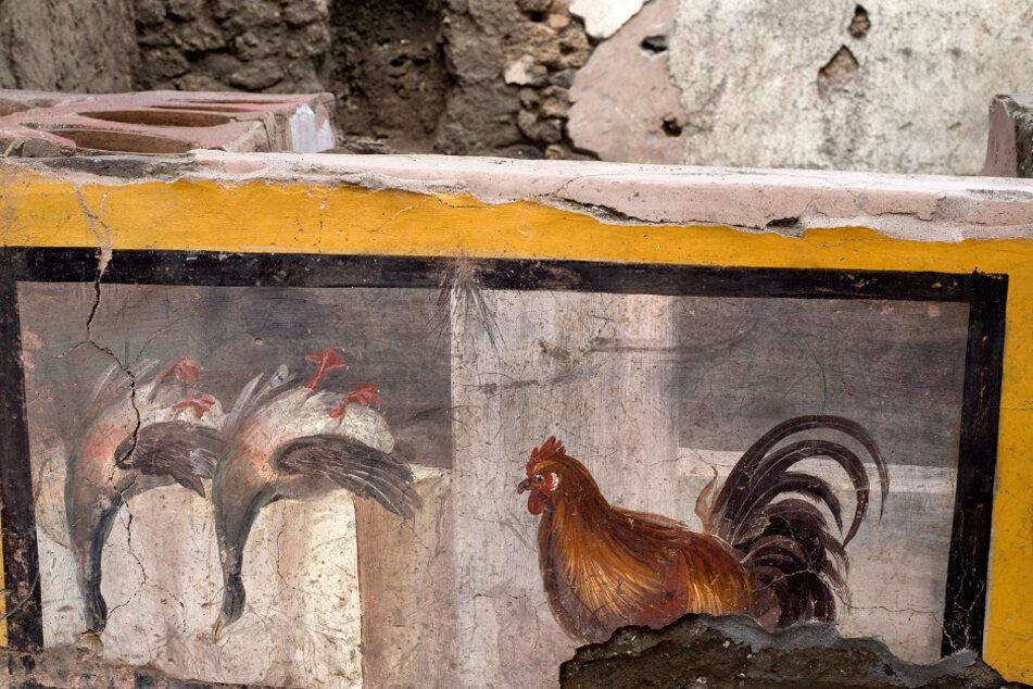 Die abgebildeten Tiere wurden vor Ort wohl geschlachtet und verkauft.