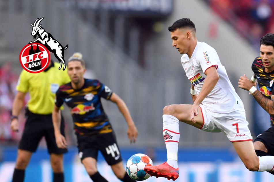"""1. FC Köln: Kapitän Hector und Ljubicic wieder auf dem Platz, Sorge um """"Dauerpatient"""""""