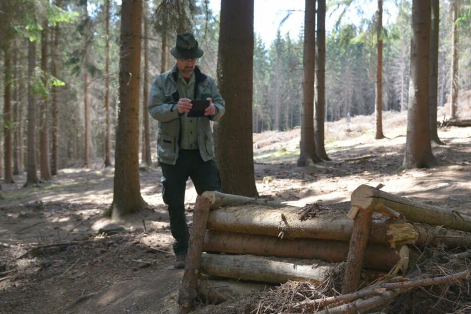 Der Förster hat's satt: Illegale Rennstrecke im Wald wird plattgemacht