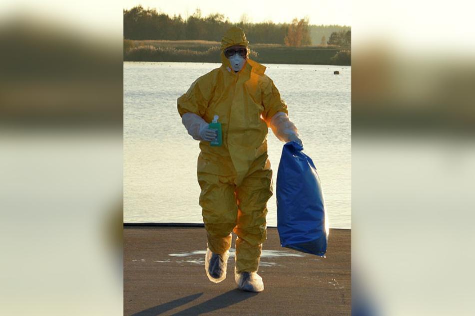Sachsen hat die Vogelgrippe. Rund 9000 Zuchtgänse mussten über Weihnachten getötet werden.