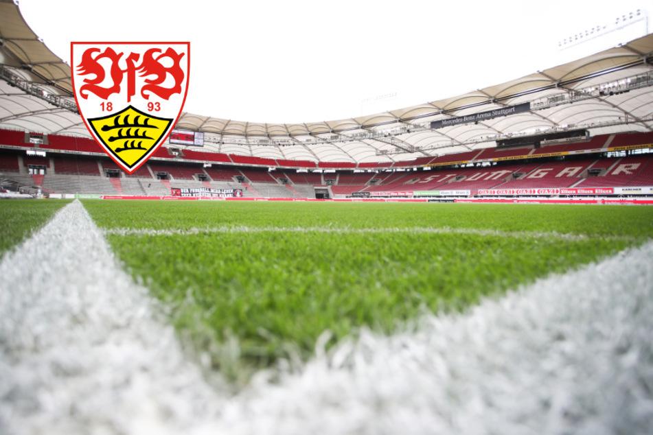 VfB Stuttgart: Heute startet das Mannschaftstraining
