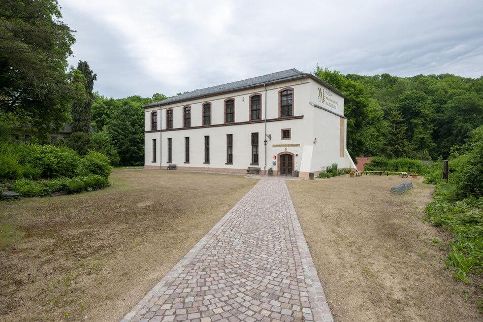 Das Naturalienkabinett Waldenburg konnte nach dem Lockdown nur teilweise wiedereröffnen.