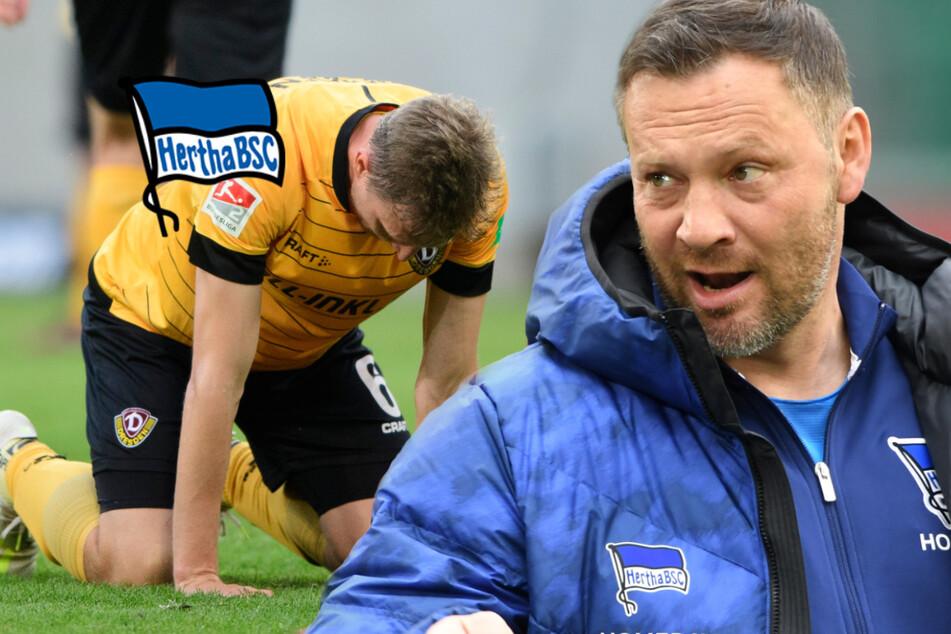 Hertha und die Angst vor dem Dynamo-Schicksal!