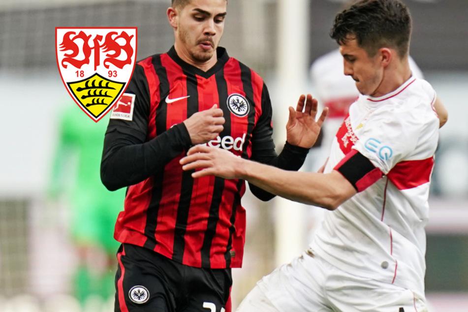 Der VfB Stuttgart beeindruckt mit seinen Defensiv-Monstern!