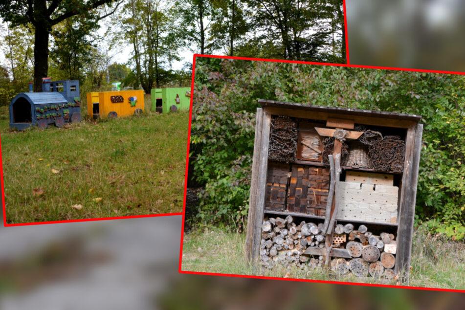 Leipzig: Beton gegen Biotop: Ist Leipziger Zaubergarten nun gerettet?