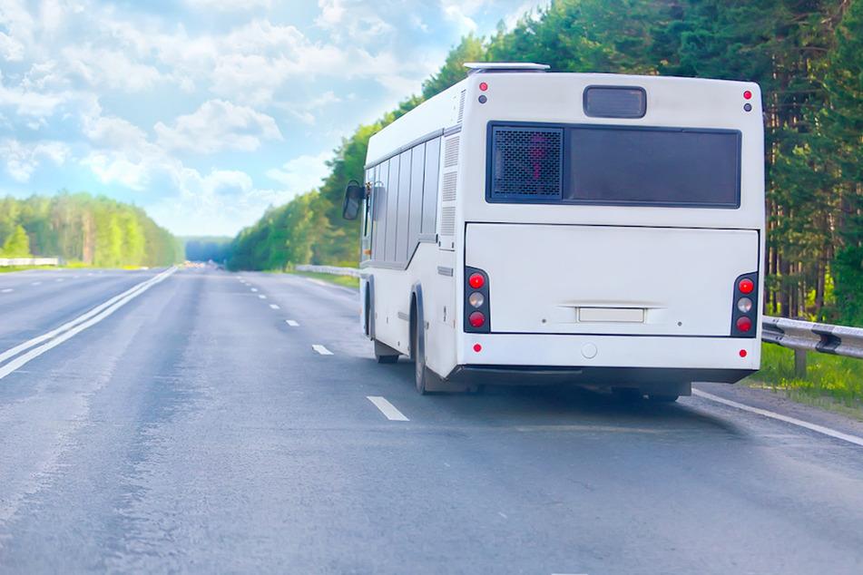 Eine Busreise hatte für 45 Fahrgäste in Oberfranken ein jähes Ende. (Symbolbild)