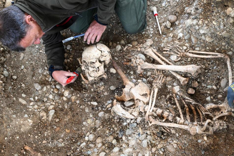 Knochen eines Menschen werden untersucht.