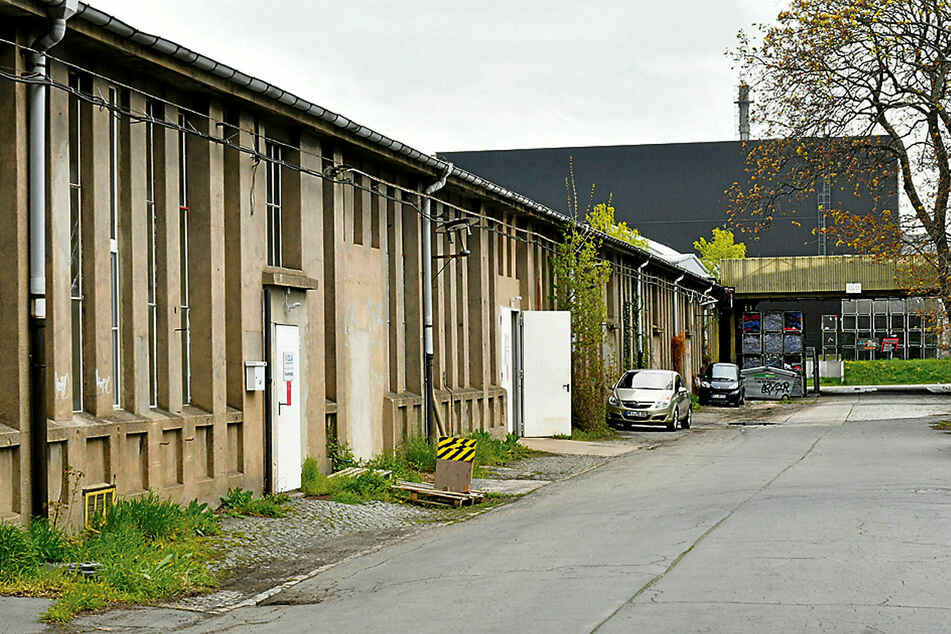Fast versteckt und unscheinbar produziert Viola in der Coswiger Grenzstraße Produkte für ganz Deutschland.