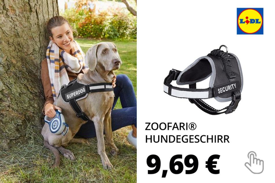 ZOOFARI® Hundegeschirr, 2 Stück, mit weicher Fütterung, reflektierend