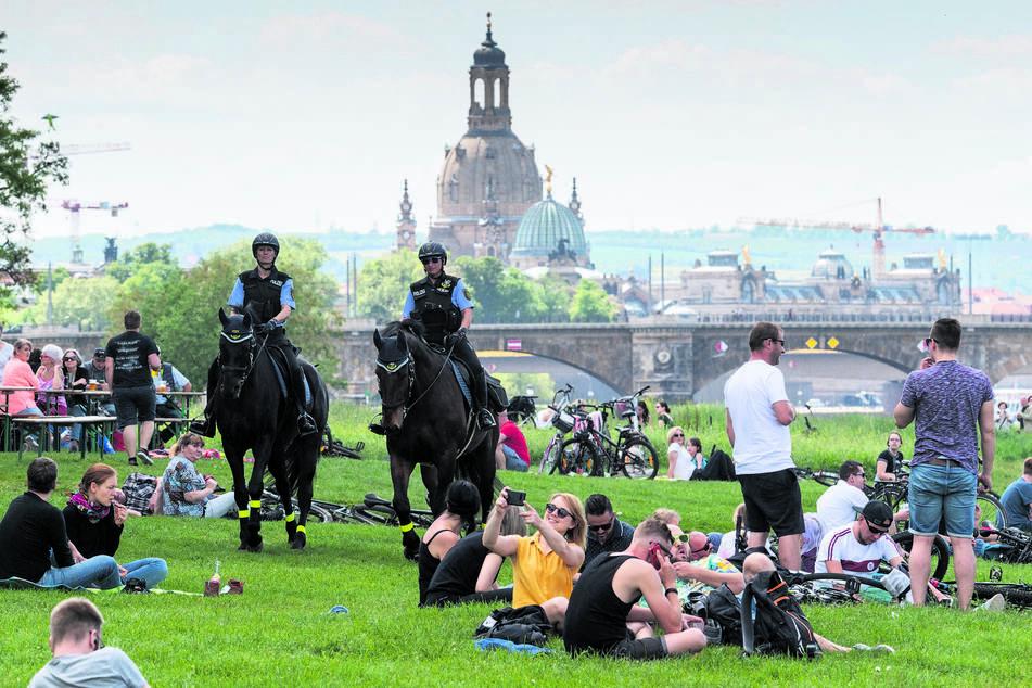 Herrentag mit Pferdestaffel. Am Elbufer patrouillierte die Polizei hoch zu Ross.