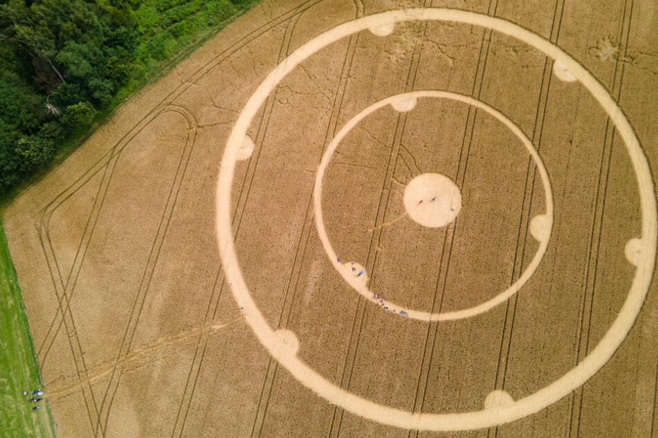 Die Kornkreise wurden am Wochenende entdeckt in einem Weizenfeld bei Gauting entdeckt.