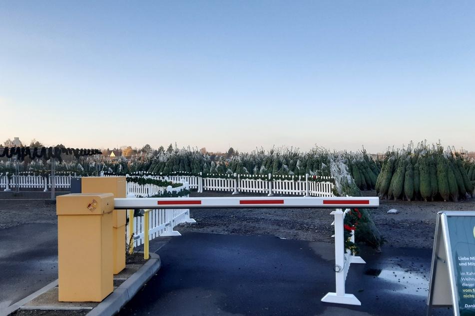 Statt mit Autos war der Parkplatz an der Helios-Parkklinik kurz vor Weihnachten vollgepackt mit Weihnachtsbäumen.