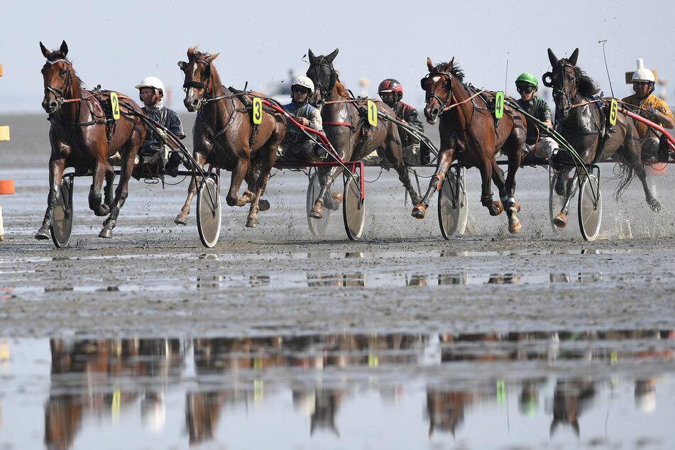 Das Duhner Wattrennen vor Cuxhaven startet am heutigen Sonntag um 9.30 Uhr. (Archivbild)