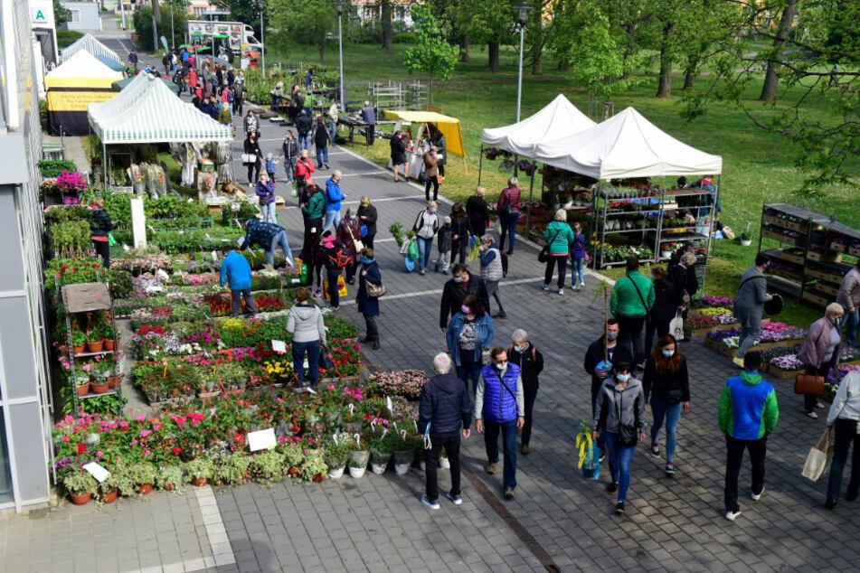 Tschechien, Olmütz: Menschen mit Schutzmasken besuchen einen Markt für Gartenzubehör, der vor dem Flora-Austellungszentrum aufgebaut wurde. Im Rahmen der landesweiten Lockerungen der Corona-Maßnahmen konnte der Markt wieder eröffnen.