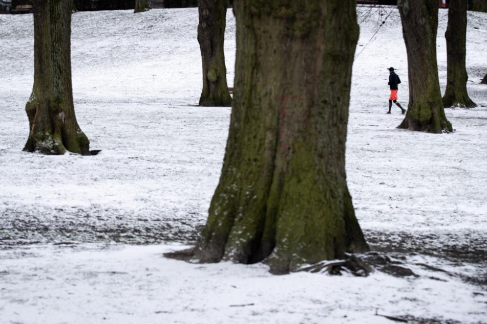 Winter meldet sich zurück: Leichter Schneefall in Hamburg