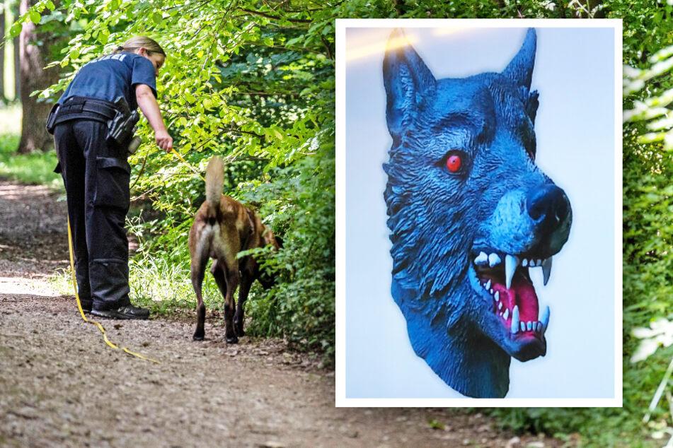 Wie im Horror-Film: Mädchen von Mann mit Wolfsmaske vergewaltigt! Vorbestrafter vor Gericht