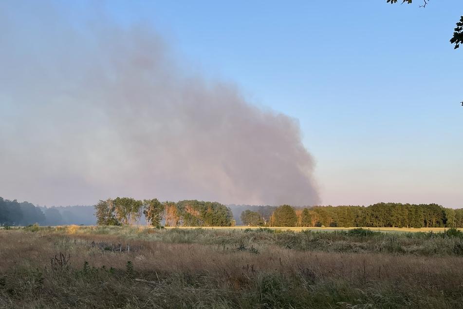 Der Regen lässt die Waldbrandgefahr etwas sinken.