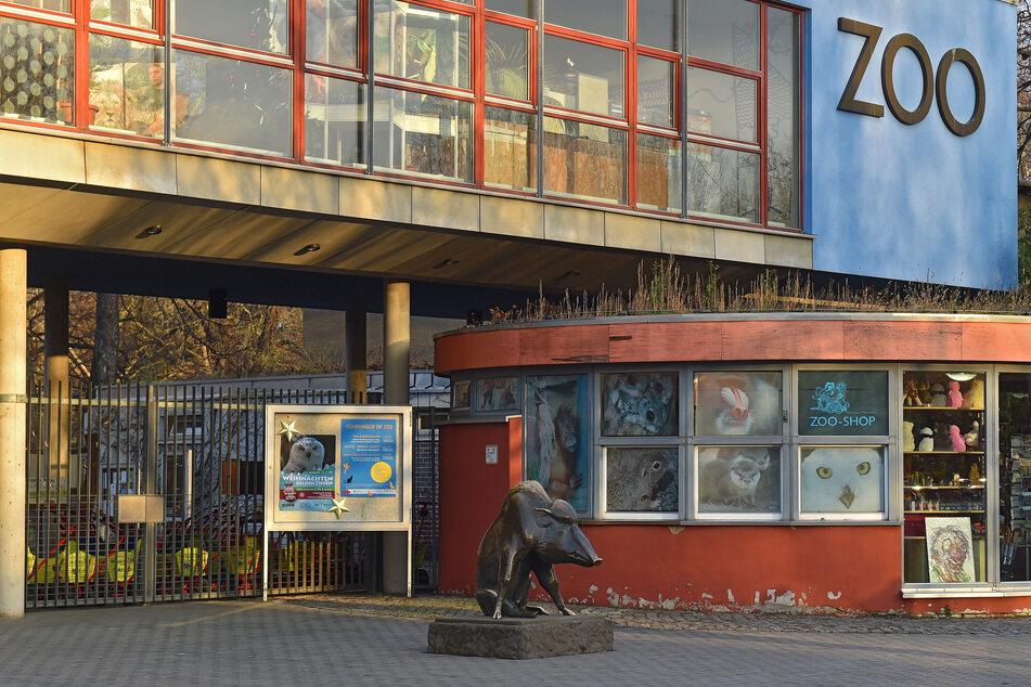 Auch im Dresdner Zoo hofft man, dass bald wieder Besucher kommen dürfen.