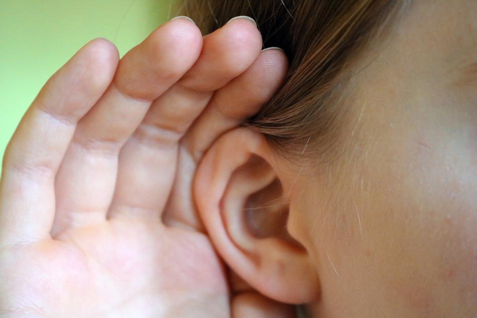 Vorsicht bei Rascheln im Ohr: Es könnte etwas darin wohnen! (Symbolbild)