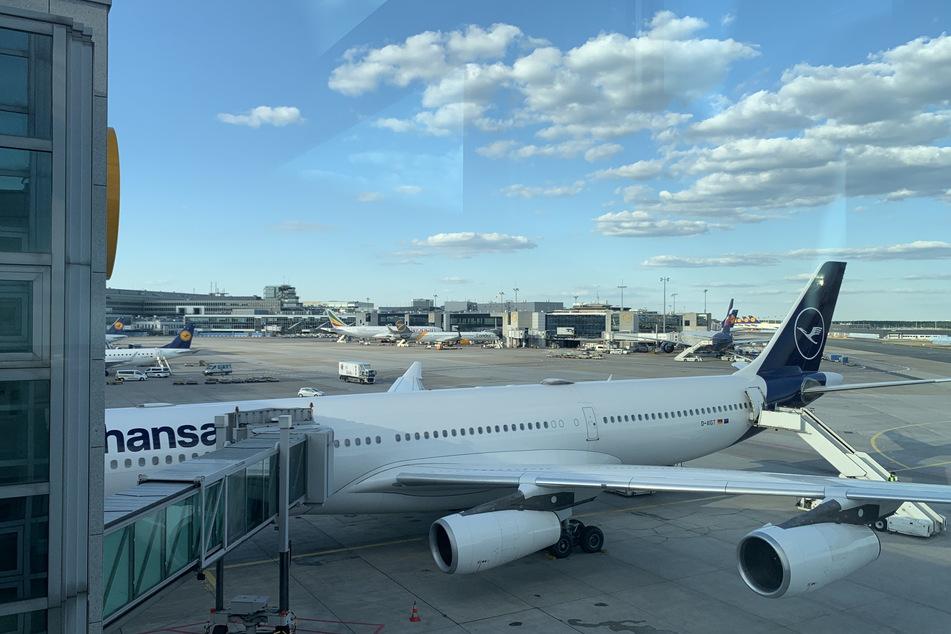 Ein Flugzeug der Lufthansa steht am Flughafen Frankfurt bereit für einen Sonderflug nach Tianjin, China.