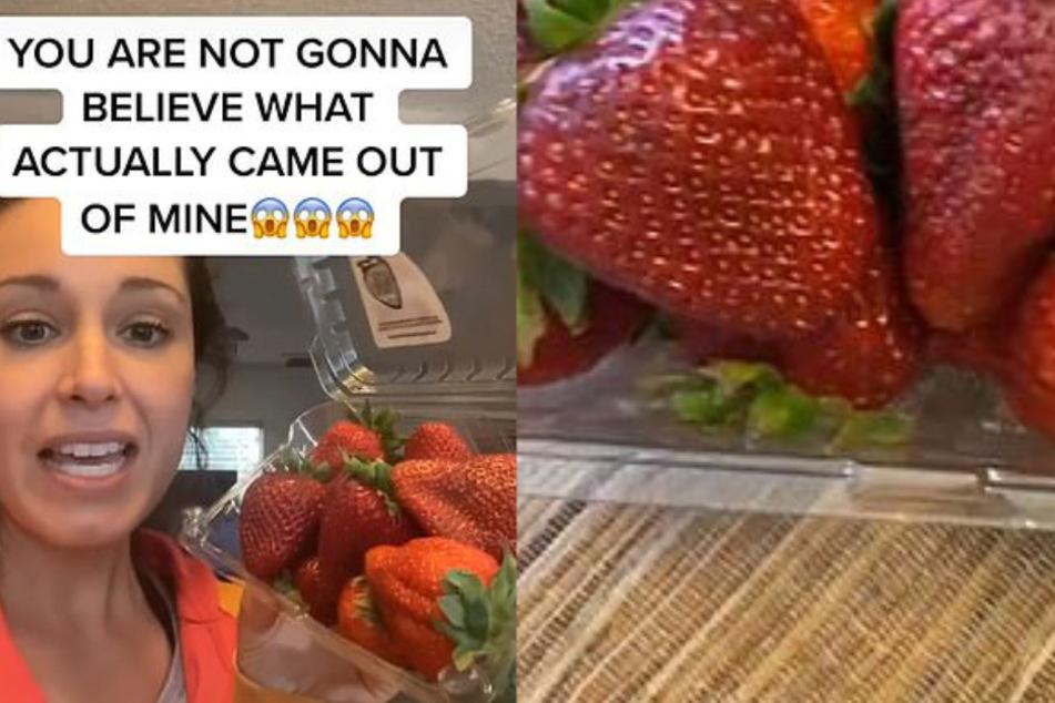 Krista Torres entdeckte Insekten, die aus ihren Erdbeeren krochen.