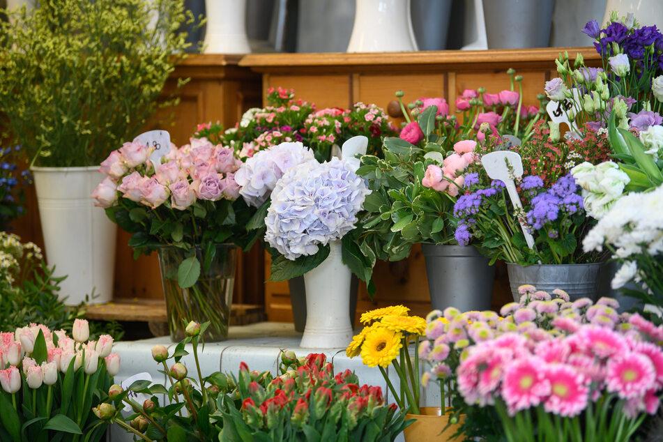 Die Qual der Wahl: Welche Blumen dürfen es zum Muttertag sein?